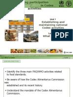 F2F Codex Lesson 1-1 Presentation