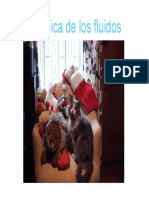 ppt_de_Mec_Flu.pdf