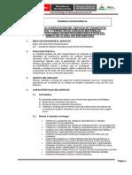 TDR RIO ENE 1 (1)