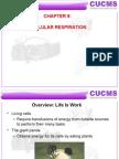 Chap9 Cellular Respiration