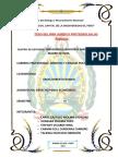 derecho penal economico ca.docx