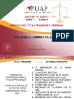 1 Título Preliminar (0).pdf