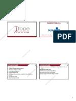 SadePblicaGabrielaSlides4PDFv3.pdf
