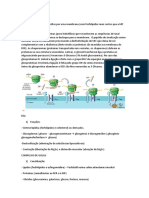 resumo biocel