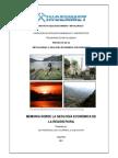 2011_GE33_Memoria_Geologia_Economica_Piura.pdf