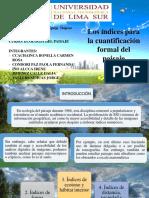 INDICE CUANTIFICACION DEL PAISAJE.pptx