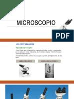 3. MICROSCOPIO
