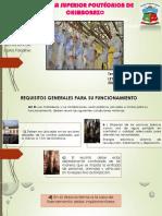 ley-de-mataderos.pptx