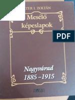 Calatori Straini Despre Tarile Romane Vol Vi PDF