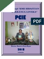PCIE  Proyecto Curricular de La Institución Educativa  JSBL-Ccesa007