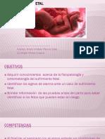 Alteracion Del Bienestar Fetal FINAL