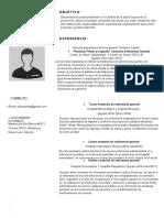 Plantilla Curriculum Vitae 15