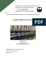 Reporte 4 Flotación.pdf