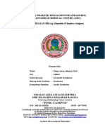LAPORAN PRAKTEK KERJA INDUSTRI HBsAg (Hepatitis B surface antigen).doc
