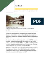 Raízes Do Café No Brasil
