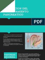 Valoración del páncreas.