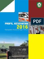 Profil Kesehatan Kotim 2016.pdf