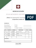 CAUDALOSA FLOTACION -1428LM (V6).docx