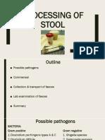Stool Processing