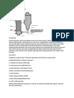 Natural Circulation Evaporator