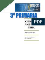 C.A. I BIM.doc
