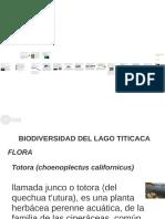 8. Biodiveridad Lago Titicaca