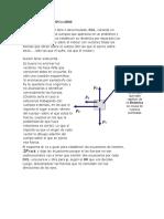 DIAGRAMA-DE-CUERPO-LIBRE.docx
