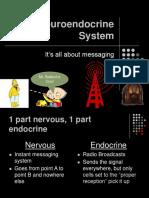 The Neuroendocrine System