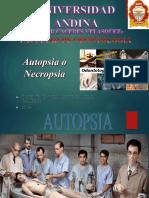 Autpsia Oral