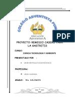 Proyecto Remedio Casero Para La Gastritis