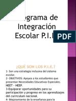 Programa de Integración Escolar (PIE),