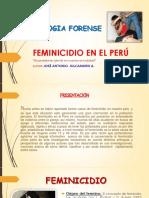 Feminicidioenelper 150828030925 Lva1 App6891