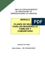 Plnes de Negocios Para Un Desarrollo Familiar