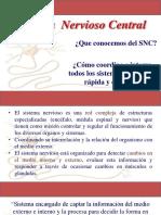 1-SNC