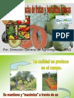 Manejo Poscosecha de Frutas.pdf