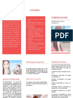 Plagable de Información Basico Preventiva Sobre La Tuberculosis