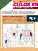 Ejercicios De Fortalecimiento (Musculacion) Tomados De Muscle & Fitness - 102 Pags En Pdf.pdf