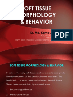 Soft Tissue Morphology