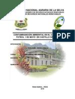 Contaminación Ambiental Pumahuasi (1)
