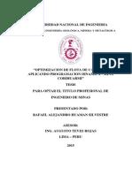 tesis araujo final.pdf