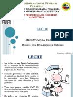 BROMATOLOGIA LECHE.pptx.pptx