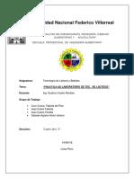 Informe II Lacteos