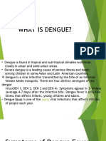 WHAT IS DENGUE.pptx