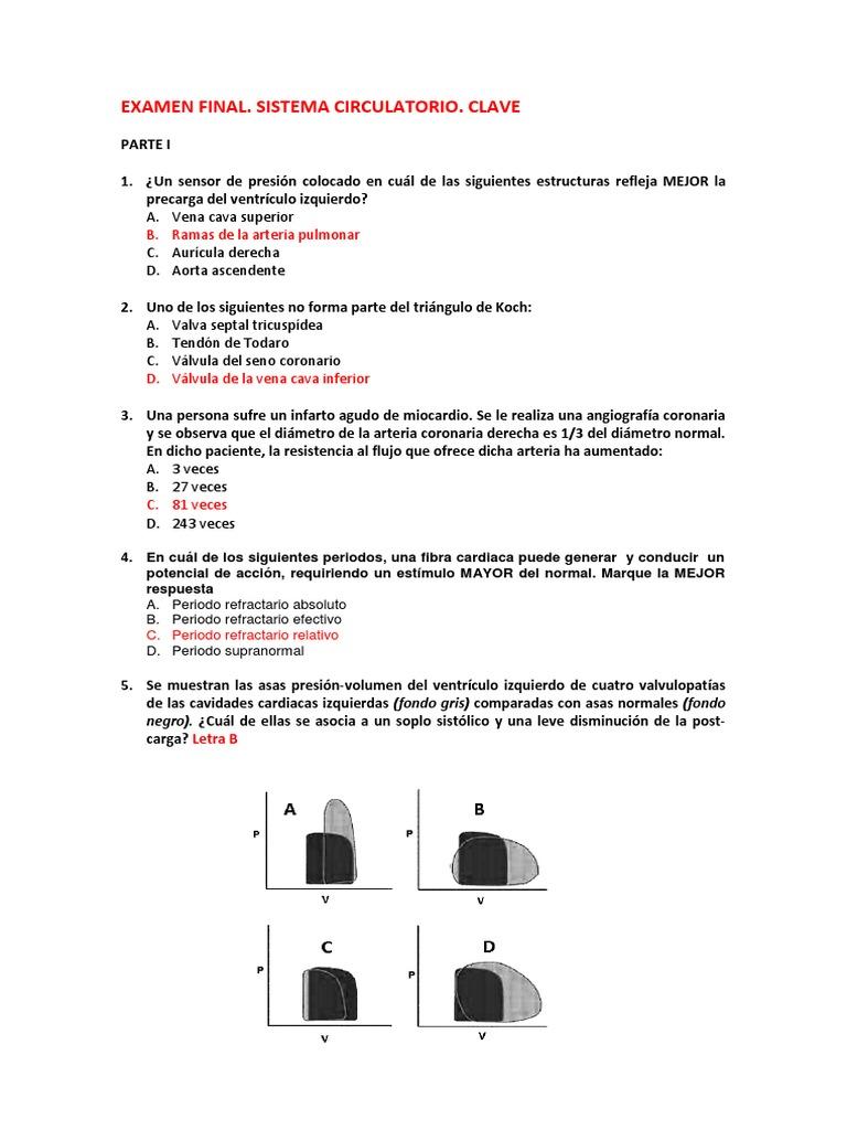 Fantástico Anatomía Y Fisiología Capítulo Clave De Respuestas 11 ...