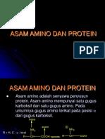 asam-amino-dan-protein.ppt