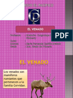 EL VENADO