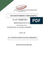 INFORME PRELIMINAR  RS-VII-SSU.pdf