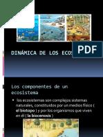 Dinamica de Los Ecosistemas