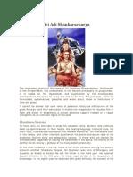 ShankaraDigvijayam1.pdf