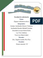Organos Inframesocolicos 1530633872